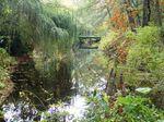 PA264531 River-in-Tiergarten-park